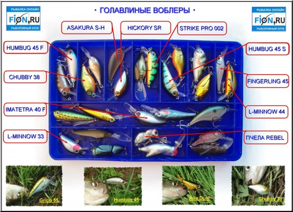 Голавлиные воблеры FION.RU. Сезон 2008. Часть № 1.